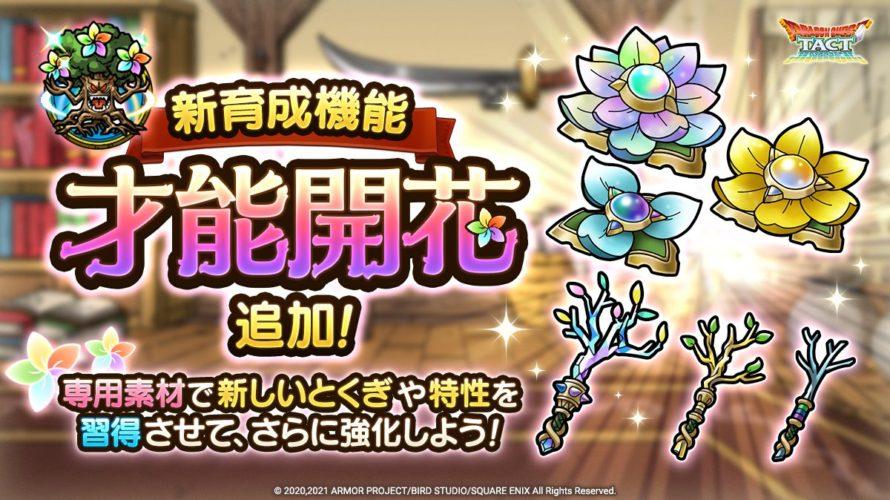 【ドラクエタクト/無課金】才能開花と最初に開花させる各ランク別キャラを考える